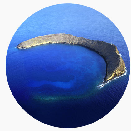 molokini diving