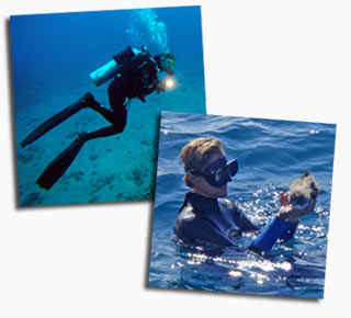 Dive Guide Pauline Fiene