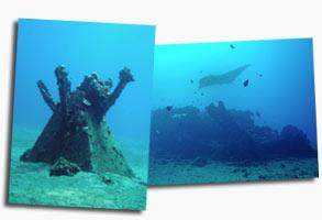 Maui Scuba Dive WW2 Objects
