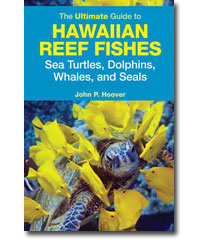 The ultimate guide to Hawaiian Reef Fishes
