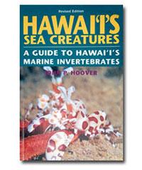 Hawaii's Sea Creatures